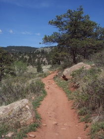 Bitterbrush Trail on Hall Ranch
