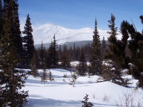 Scenery along the Brainard Lake trail