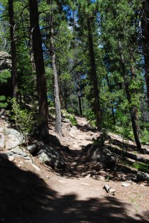Maxwell Falls trail; near Evergreen, Colorado