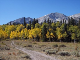 Mt. Sopris fall colors, near Carbondale