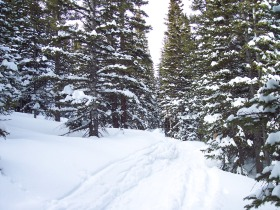 Odessa Lake trail in winter, R.M.N.P.