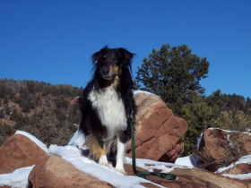 Branson at Garden of the Gods