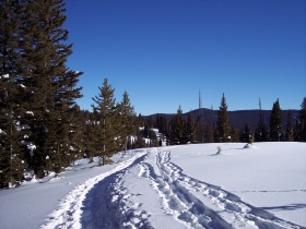 Another portion of the West Summit Loop 1A trail; Rabbit Ears Pass