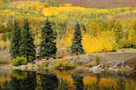 Lower Cataract Lake, Colorado fall color.