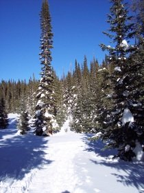 Steamboat Springs area winter
