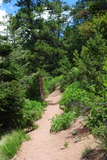 Waldo Canyon Trail, Colorado